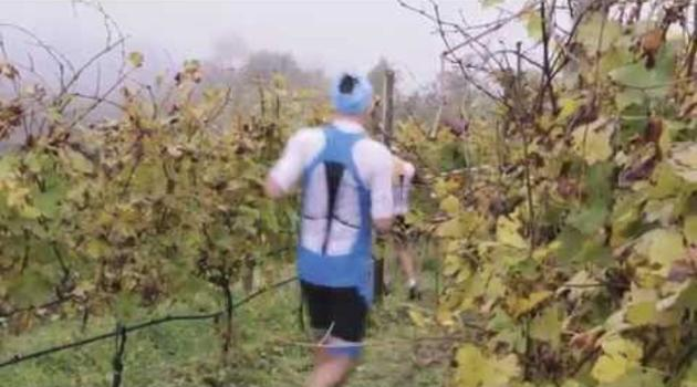 Scott Valtellina Wine Trail 2014