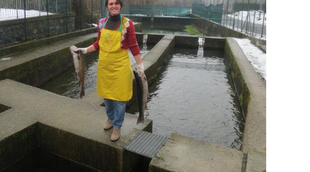 I pesci di cataeggio la gazzetta di sondrio for Vasche per allevamento trote