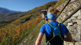 Valtellina Wine Trail 2015